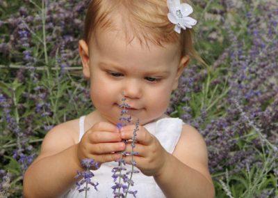 lavendar-baby